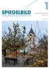 Spiegelbild_2012-11